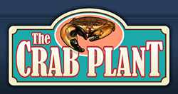 The Crab Plant ~ Crystal River