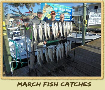 March 2017 Fishing Report