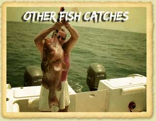 Other Fish To Catch