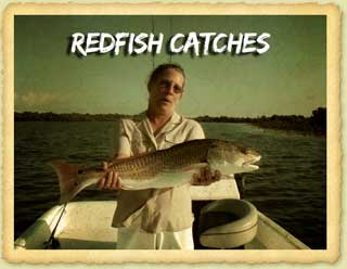 Redfish Fishing Catches