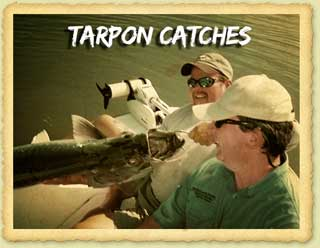 The Thrill Of Tarpon Fishing